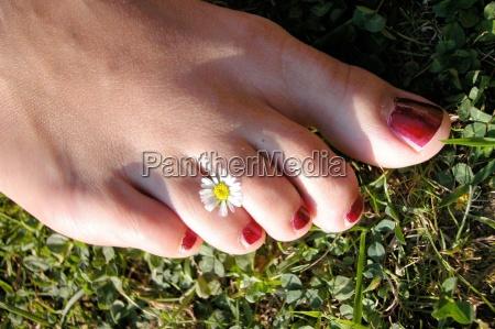 barefoot toes leg legs feet feet