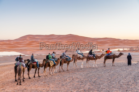 camel caravan with tourists going to