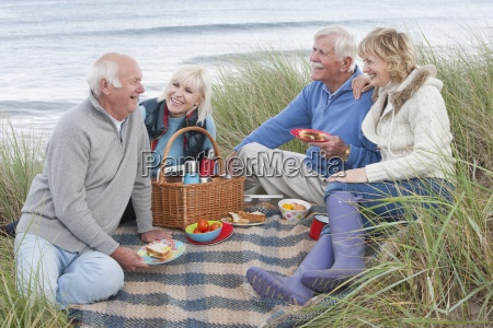 group of mature friends enjoying picnic
