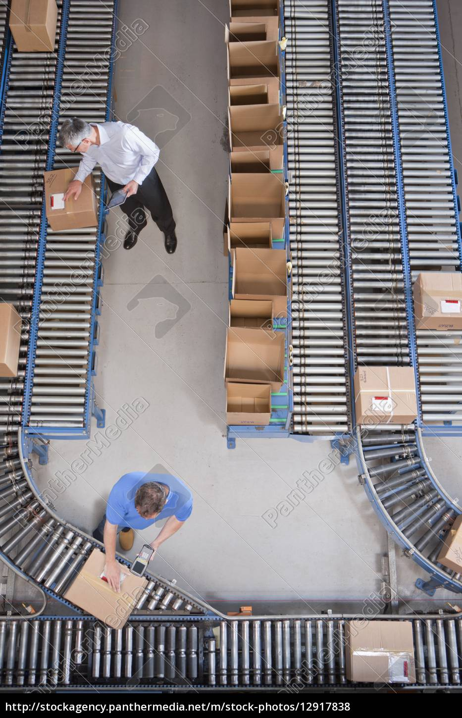 workers, packing, boxes, on, conveyor, belts - 12917838