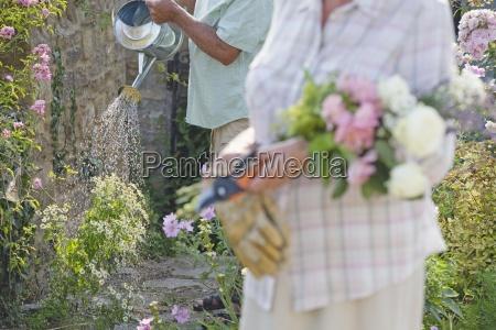 close up of senior man watering