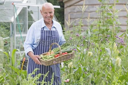 senior man wearing chefs apron picking