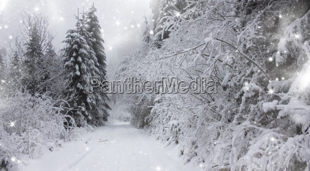 christmas background with snowy road in