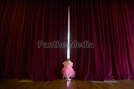 ballerina girl 4 6 with fairy