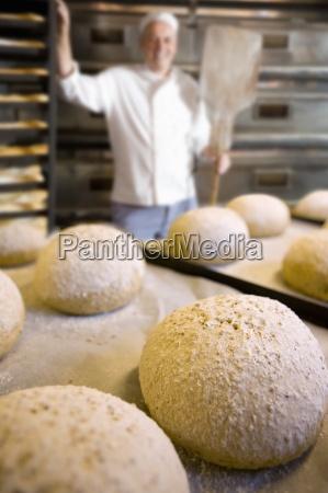 fresh loves of bread in bakery