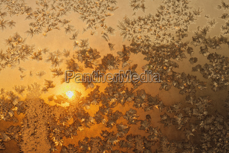 snowflakes and ice on frozen window