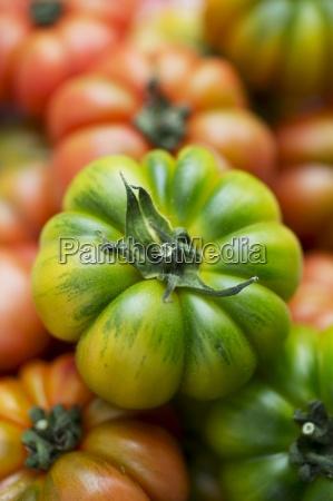 assorted beef tomato beefsteak tomato blur