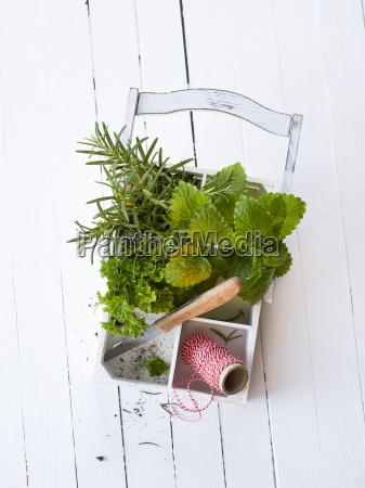 above balm basket classic herbs copy