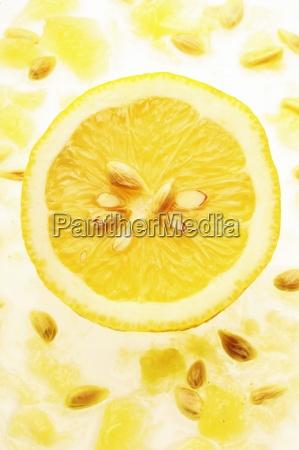 citric citrus citrus fruit close range