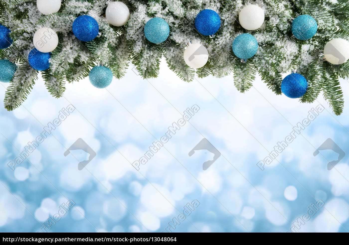 christmas, background, with, fir, branches - 13048064