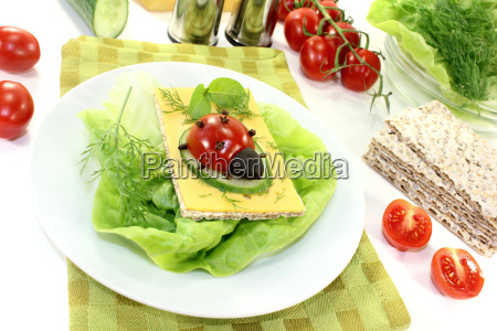 crispbread with cheese salad and ladybug