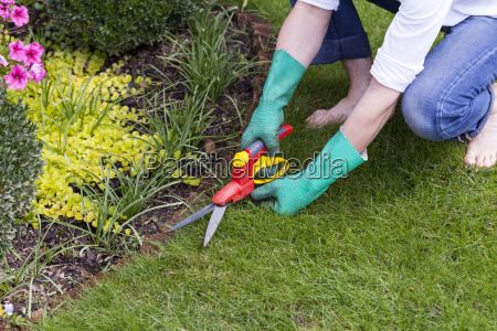 hands with gloves and pruning shears
