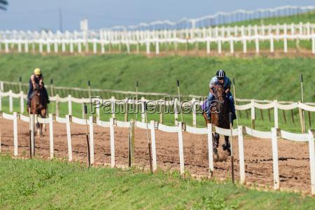 race horse jockey training