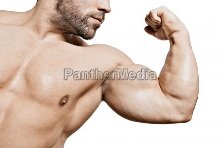 biceps of a bodybuilder
