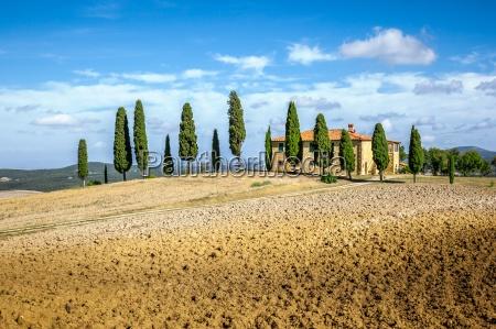 tuscany - 13232242