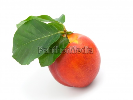 ripe peach with leaves on a