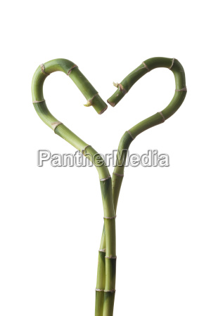 bamboo heart isolated on white