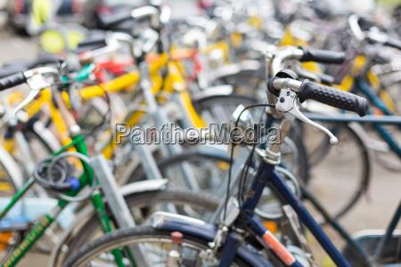 bike rental service many bikes
