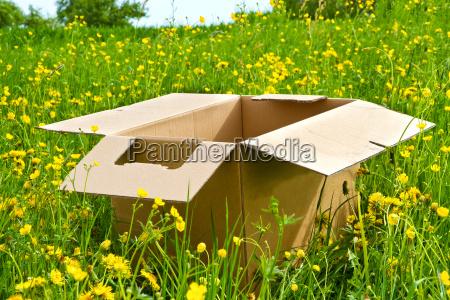 carton in nature