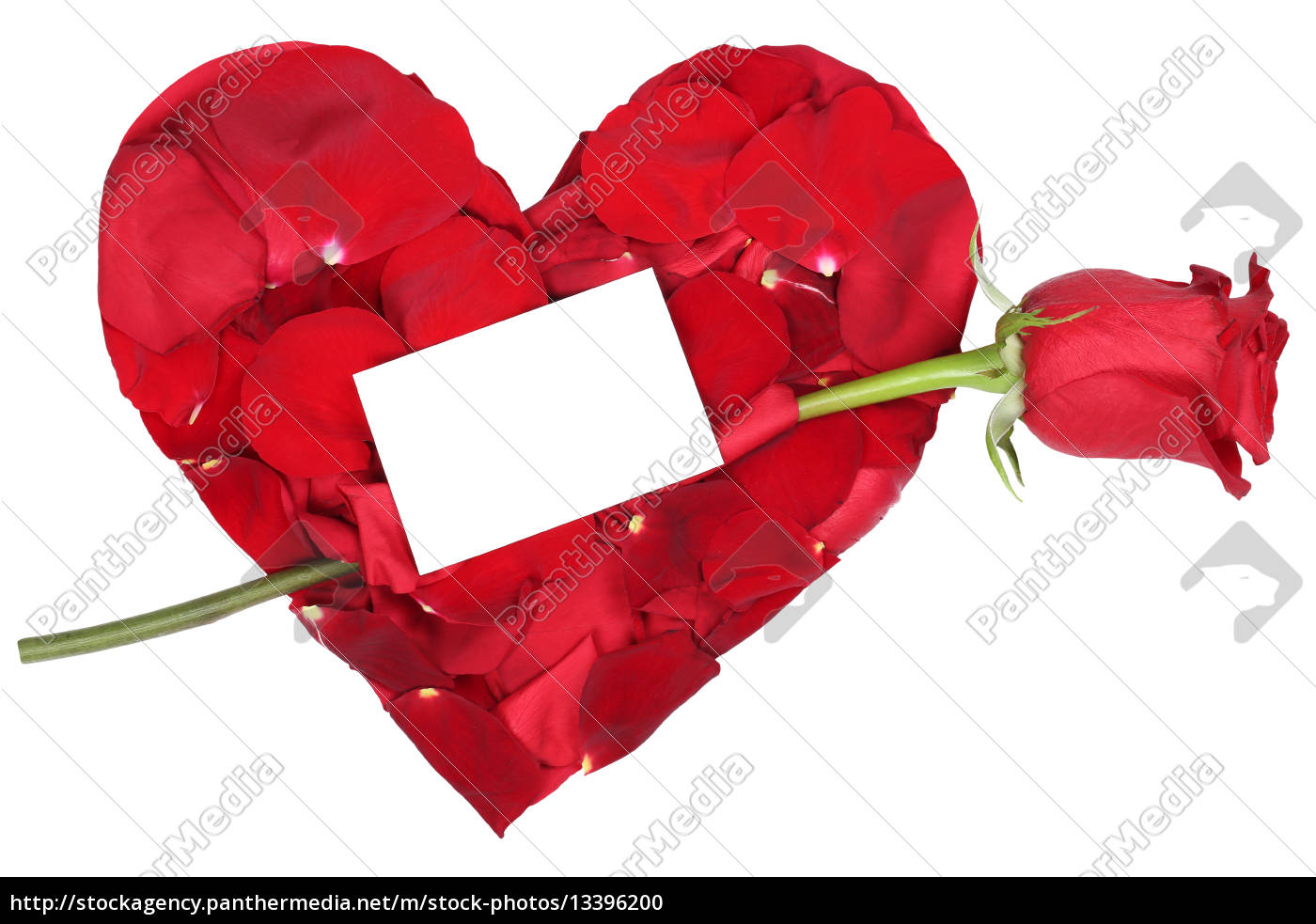 Heart With Rose Theme Of Love For Valentine S Day Royalty Free