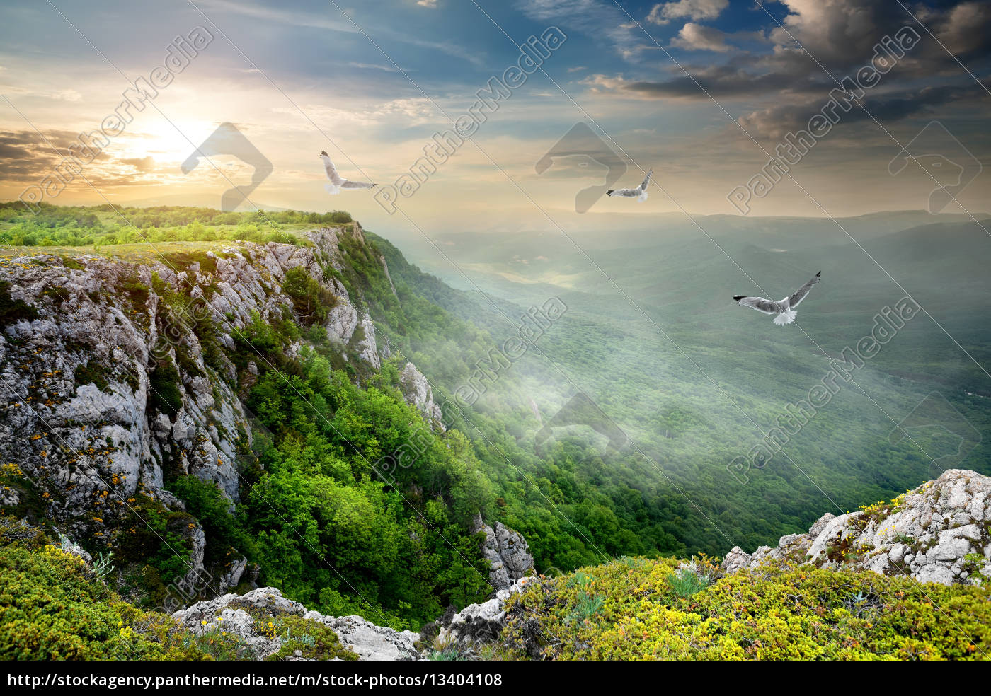 birds, over, plateau - 13404108