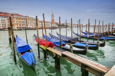 moored, gondolas, at, dock, in, venice - 13408774