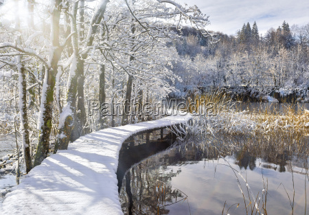 snowy catwalk over the pond