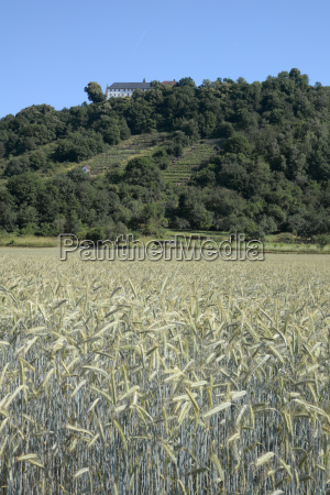 field with monastery engelberg