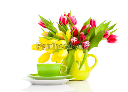yellow tulips flowers with cup of