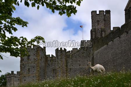 castell arundel