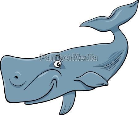 whale animal cartoon illustartion