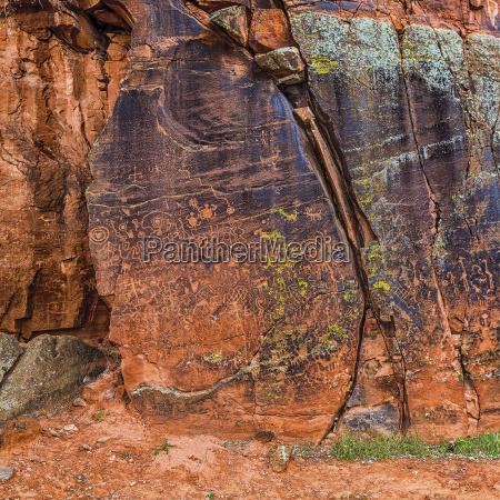 large panel of petroglyphs