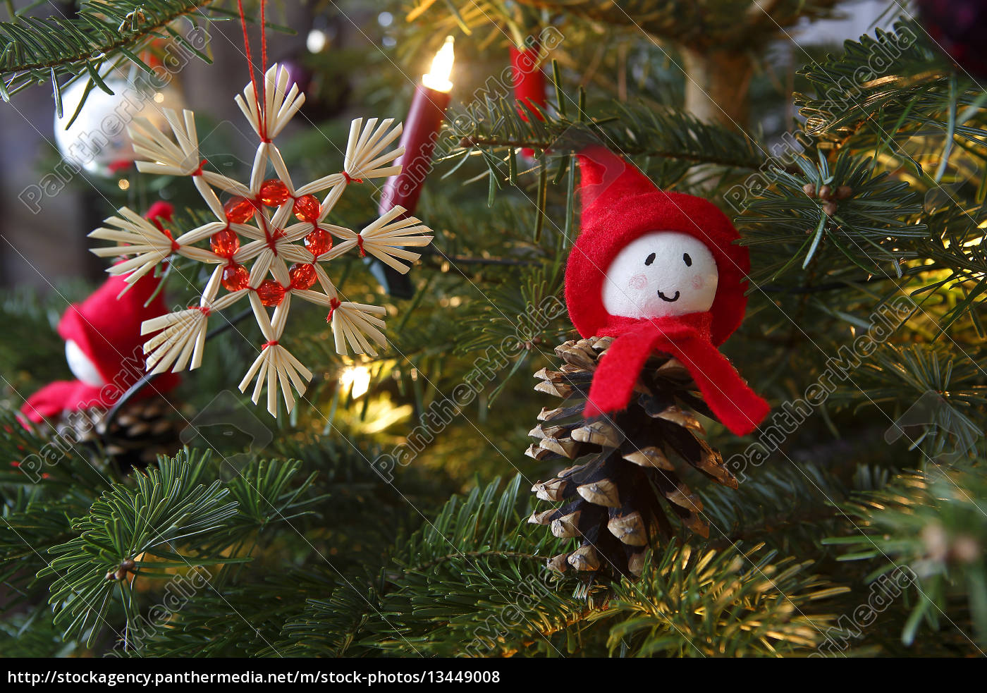 closeup, of, a, green, christmas, tree - 13449008