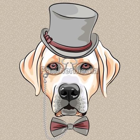 vector serious cartoon hipster dog labrador