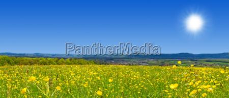 spring landscape near the swabian alb