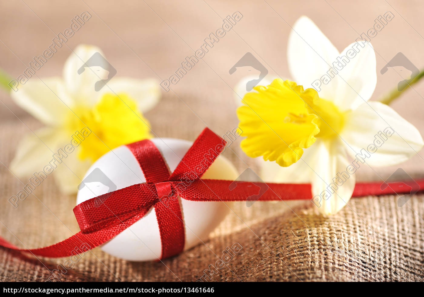 easter, egg, with, bow - 13461646