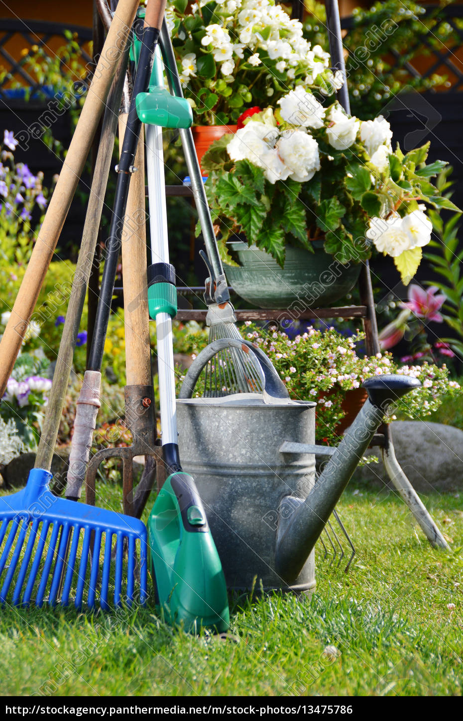 watering, can, and, tools, in, the - 13475786