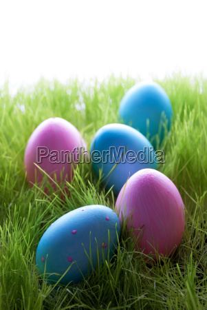 many pink and blue easter eggs