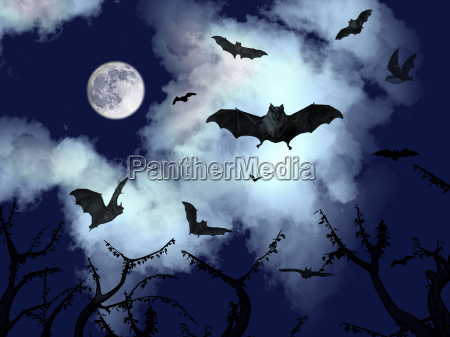 bats flying in the halloween night