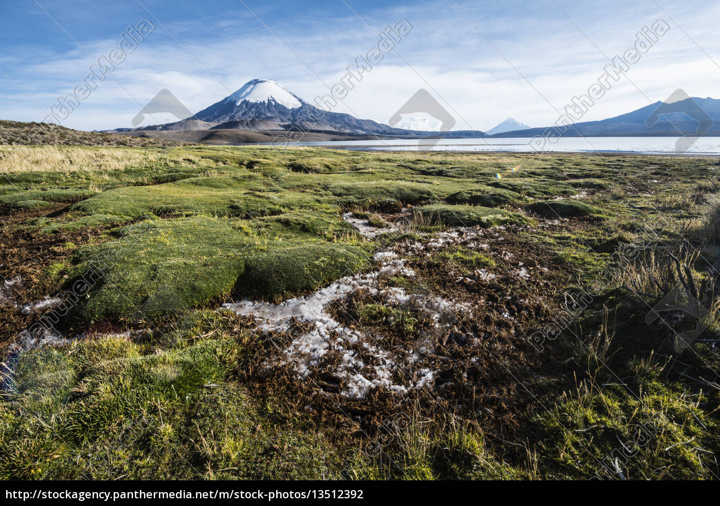 snow, capped, parinacota, volcano, reflected, in - 13512392