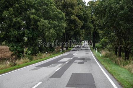 country road in brandenburg