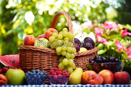 basket, of, fresh, organic, fruits, in - 13537954
