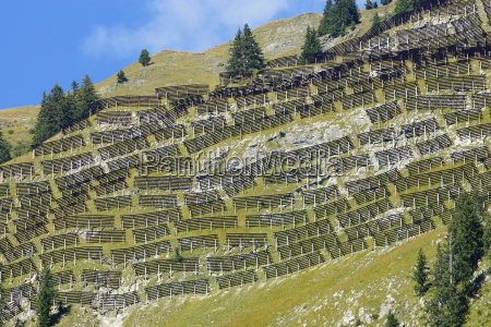 avalanche protection in the alps