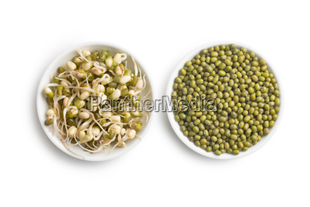 sprouted and dried mung beans
