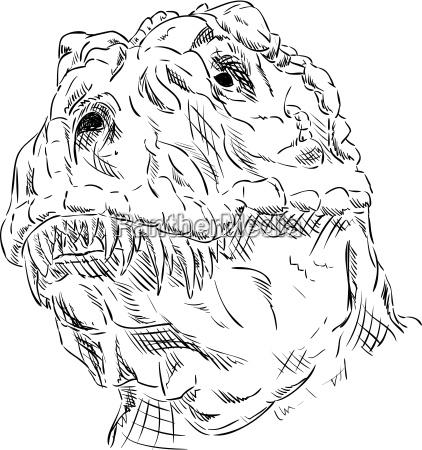 head dinosaur