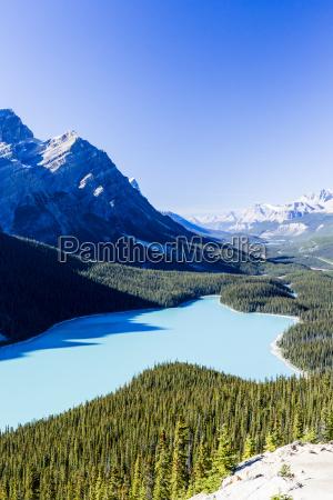 peyto lake banff national park rocky