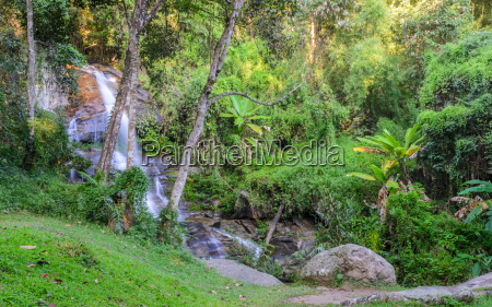 evergreen forest waterfall in chiang mai