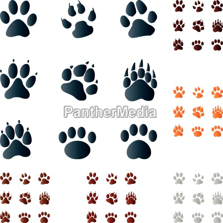 paws signs symbols buttons