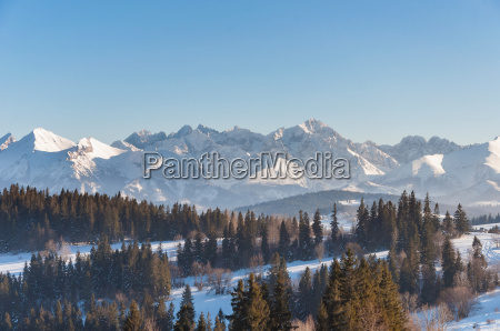 winter landscape of tatra mountains