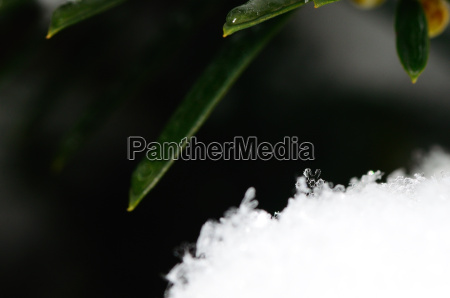 crystal in the snow on the